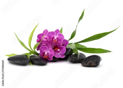 Foto op Canvas Zen Zen pebbles and orchid flower. Stone spa and healthcare concept.