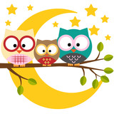 Three owls on a branch on a night moon sky background