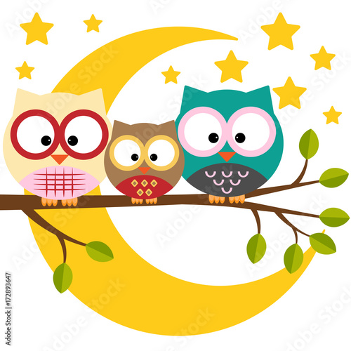 Foto op Aluminium Uilen cartoon Three owls on a branch on a night moon sky background