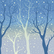 Winter Trees Background. Winter landscape with trees, snow. Snow In Forest. Vector Illustration. Season Nature. - 172898089