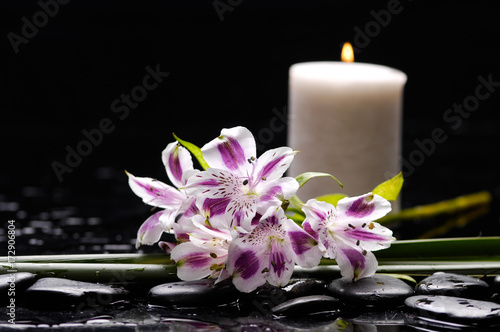Keuken foto achterwand Spa bouquet of orchid and green leaf with candle therapy stones