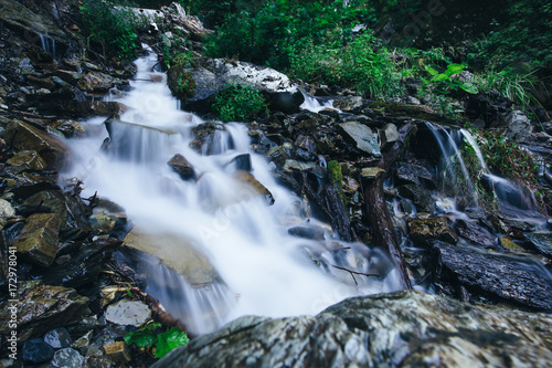 Cascading Stream in mountain forest Poster