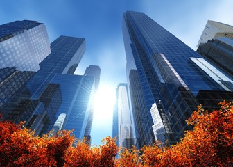 autumn city, beautiful view of the skyscrapers, 3d rendering