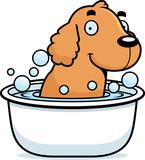 Cartoon Cocker Spaniel Bath