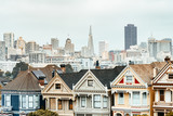 painted ladies and san francisco skyline at background view - 173057864
