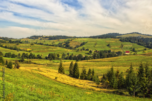 Foto op Canvas Europa Carpathians fields in the morning. Ukraine