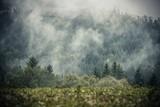 Foggy Hills Landscape - 173088611