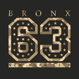 Bronx, New York. Design clothes with camouflage, t-shirts. Sports graphics with number for print. Vector illustration. - 173090442