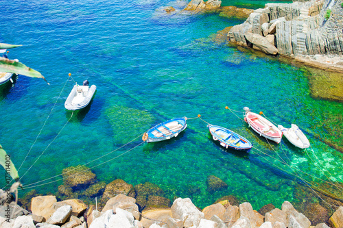 Beautiful cozy bay with boats and clear turquoise water in Italy coast, Manarola Poster