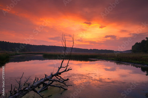 Foto op Canvas Koraal Early morning, dawn over the lake. Misty morning, rural landscape, wilderness, mystical feeling