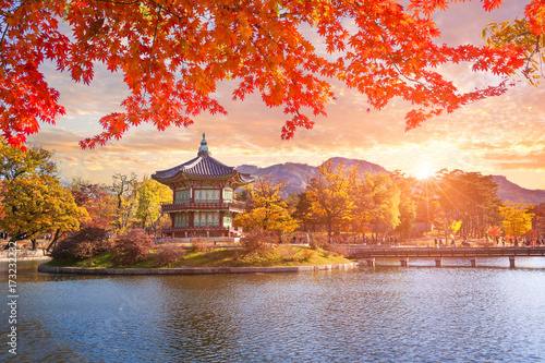 Aluminium Seoel Maple trees with a lake at gyeongbokgung palace, Seoul, South Korea.