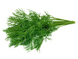 Dill - 173251626