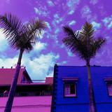 Minimal fashion urban art. Palm Tropics location.