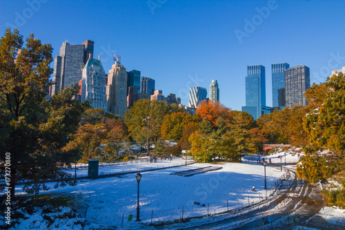 Fall Snow on Central Park, New York City. Poster