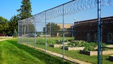 Prisons and Confinement - Illegal Immigrant Detention Facilities - 173280271