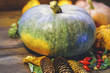 gray pumpkin on a blurred background