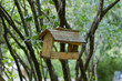 self-made bird feeder