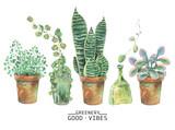 Watercolor green plants in pots - 173307875