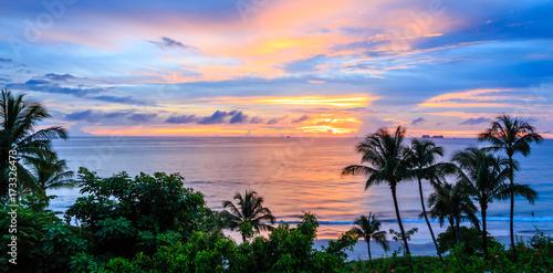 Tropikalny Kostaryki zachód słońca z sylwetki drzewa palmowego