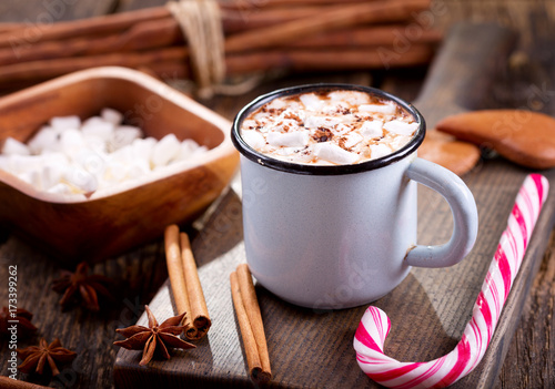 Poster Chocolade Christmas drink. Cup of hot chocolate with marshmallows.