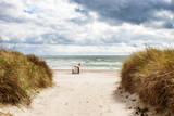 Beach on Baltic sea coast