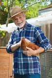 Farmer holds chicken in his arms in front of hen house - 173439495