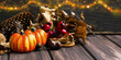 Fall festive decoration with pumpkins, chestnuts , acorns and brighty lights, halloween celebration
