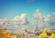 Paris city roofs with Eiffel Tower from above at fall day, Paris France