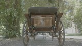 Retro vintage carriage drawn by a horse in the forest - 173486433