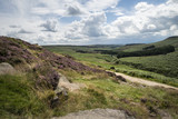 Beautiful vibrant landscape image of Burbage Edge and Rocks in Summer in Peak District England - 173498043