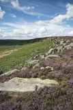 Beautiful vibrant landscape image of Burbage Edge and Rocks in Summer in Peak District England - 173499079