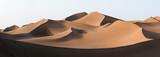 Golden dunes - 173510029