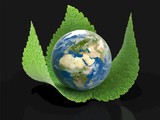 3d Globe on leaves. Image with clipping path
