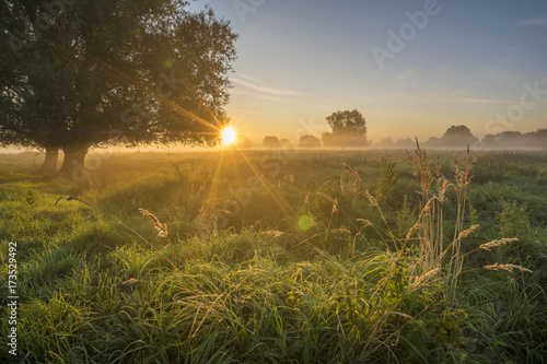 Fotobehang Zomer beautiful fairytale sunrise over a foggy meadow