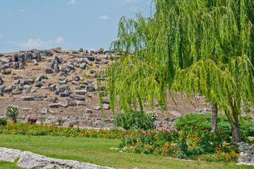 Antique city Hierapolis, Turkey. View on grey stones on hill under green willow tree, sunny summer day