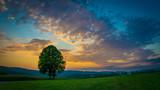 Sonnenuntergang mit einsamen Baum und Wolken am Himmel im Bayerischen Wald