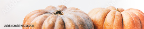 Keuken foto achterwand Verse groenten Couple ripe autumn pumpkin on white table on kitchen. Minimalism style,copy space