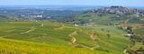 Vignobles à Sancerre - 173561412