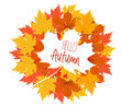 Hello autumn. The decor of the autumn leaves. white maple leaf with the text