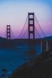 golden gate bridge purple pink sunset