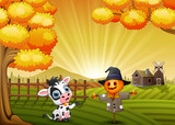 Cartoon cow with halloween scarecrow in the farm background