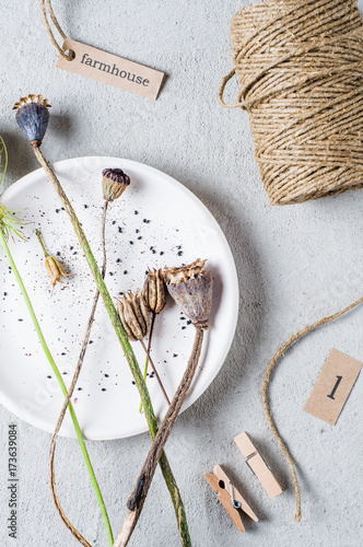 Keuken foto achterwand Klaprozen Buds and poppy seeds in a white plate over gray concrete background