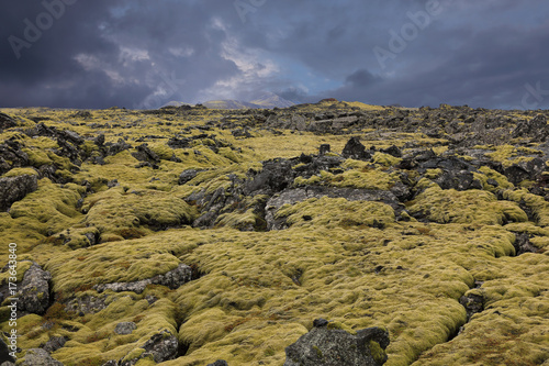 Keuken foto achterwand Noord Europa Lava stones covered with moss in Iceland