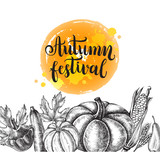 Background with Ink hand drawn vegetables and fruits - zucchini, pumpkin, patisson, pear, corn. Autumn harvest elements composition with brush calligraphy style lettering. Vector illustration. - 173708633