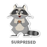 Isolated surprised raccoon.
