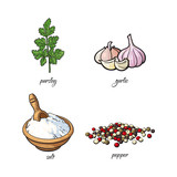vector flat cartoon sketch hand drawn Spices, seasoning, flavorings and kitchen herbs set. Parsley leaves with stem, black pepper, garlic and white salt. Isolated illustration on a white background - 173757864