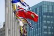 Flag Up High