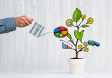 Drawn income tree in white pot for business investment savings and making money - 173786019