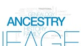 Ancestry animated word cloud, text design animation. Kinetic typography. - 173791046