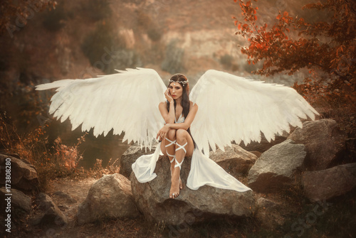A beautiful white archangel descended from heaven Poster